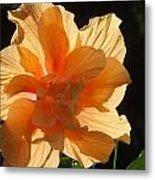Tropical Hibiscus In The Sun Metal Print