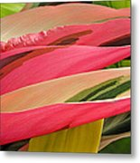 Tropical Leaves Abstract 3 Metal Print