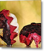 Tropical Mangosteen Metal Print