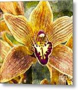 Tropical Orchid Metal Print
