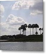 Tropical Palms And Clouds Metal Print