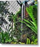 Tropical Paradise Falling Waters Buffalo Botanical Gardens Series   Metal Print