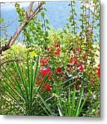 Tropical Red Against Cool Mountain Mists Metal Print