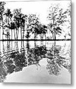 Tropical Reflections Metal Print