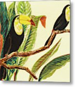 Tropical Toucans II Metal Print