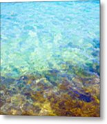 Tropical Treasures Metal Print