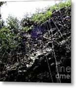 Tropical Vines Metal Print