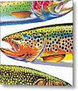 Trout Abstraction Metal Print
