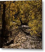Trout Creek Metal Print