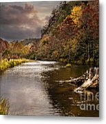 Trout Fishing Metal Print by Tamyra Ayles