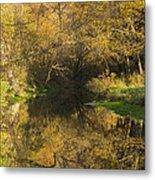 Trout Run Creek Fall 2 Metal Print