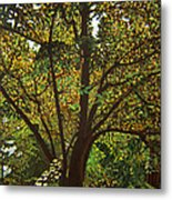 Trunk Of Life Metal Print