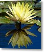 Truth Reflected Metal Print