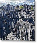 Tsingy De Bamaraha Madagascar Metal Print