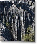 Tsingy De Bemaraha Metal Print