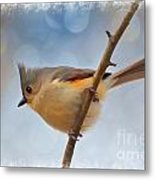Tufted Titmouse - Digital Paint II With Frame Metal Print
