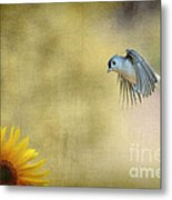 Tufted Titmouse Flying Over Flower Metal Print