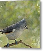 Tufted Titmouse With Decorations II Metal Print