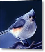 Tufty The Titmouse Metal Print