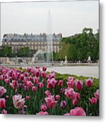 Tuileries Garden In Bloom Metal Print by Jennifer Ancker