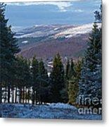 Tulchan Estate - Early Winter Metal Print