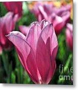 Tulip Angel Metal Print
