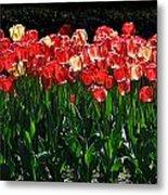 Tulip Forest Metal Print