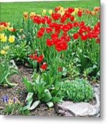 Tulip Gardenscape Metal Print