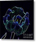 Tulip Glowing In The Moonlight Metal Print