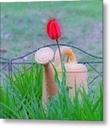 Tulip Hdr Metal Print