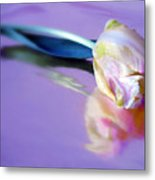 Tulip Reflected Metal Print