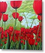 Tulipanes  Metal Print