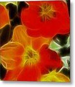Tulips-6681-fractal Metal Print