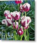 Tulips Among The Forget Me Nots Metal Print