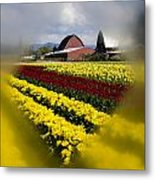 Tulips And Barn Metal Print