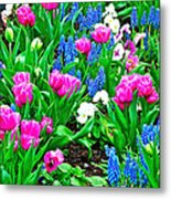 Tulips And Pansies And Grape Hyacinth By Lutheran Cathedral Of Helsinki-finland Metal Print