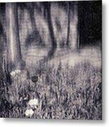 Tulips And Tree Shadow Metal Print