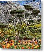 Tulips At Dallas Arboretum V49 Metal Print