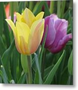 Tulips - Caring Thoughts 03 Metal Print
