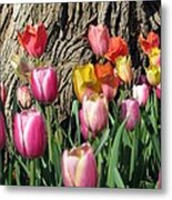 Tulips - Field With Love 07 Metal Print