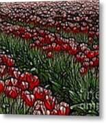 Tulips Fields Are Forever Metal Print