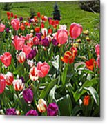 Tulips Garden Art Prints Colorful Spring Floral Metal Print