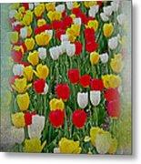 Tulips In A Field Metal Print