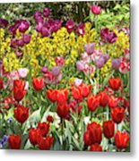Tulips In St James's Park, London Metal Print