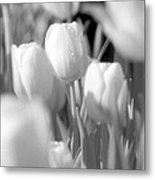Tulips - Infrared 11 Metal Print