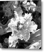 Tulips - Infrared 25 Metal Print