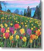 Tulips Lake Metal Print