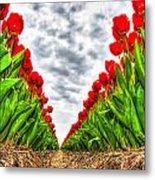 Tulips Part IIi Metal Print