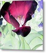 Tulips - Perfect Love - Photopower 2043 Metal Print
