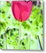 Tulips - Perfect Love - Photopower 2070 Metal Print